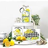 cocomong Lemon Tiered Tray Decor,Rustic Farmhouse Home Decor Signs,Funny Lemon Kitchen Decor-Wooden Mini Block Shelf Sitter,B