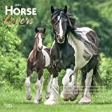 Horse Lovers 2021 12 x 12 Inch Monthly Square Wall Calendar with Foil Stamped Cover, Animals Horses
