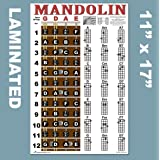 """Laminated Mandolin Fretboard Notes & Easy Beginner Chord Chart 11""""x17"""" Instructional Poster by A New Song Music"""