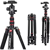 BONFOTO B690A Lightweight Aluminum Tripod Portable Travel Camera Stand with 360 Degree Ball Head and Carry Bag, Tripods for C