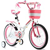 RoyalBaby Girls Kids Bike Jenny 12 14 16 18 20 Inch Bicycle for 3-12 Years Old Child's Cycle Basket Child Bike Pink