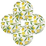 ALAZA 15 Inch Round Placemat Place Mat Set of 4, Lemon Floral Round Table Place Mats Washable for for Fall, Dinner Parties, B
