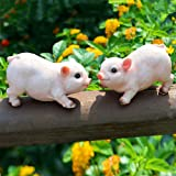 XIFIRY Animal Garden Gnomes Statue Cute Pig Funny Outdoor Sculpture Resin Lawn Ornaments Décor Indoor Outdoor Figurines for G