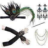 FeiYu Crafts 1920s Flapper Accessories Gatsby Costume Set 20s Headband Earrings Gloves Cigarette Holder Necklace for Women Pr