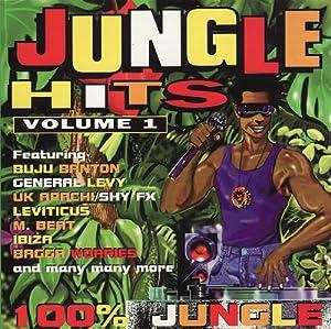 Jungle Hits Vol.1