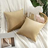 MIULEE Pack of 2 Velvet Pillow Covers Decorative Square Pillowcase Soft Solid Cushion Case for Sofa Bedroom Car 12 x 12 Inch