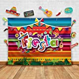Fiesta Theme Photography Backdrop & Studio Props Kit. Great as Mexican Dress-up Photo Booth Background, Cinco de Mayo, Mexica