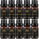 Aromatherapy Ginger Essential Oil Set for Diffuser, 100% Pure Cinnamon Essential Oil Kit for Humidifier, 10x10ml Therapeutic