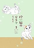 拾い猫のモチャ3 (中経☆コミックス)