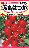 株式会社トーホク 赤丸はつかラディッシュ 01151
