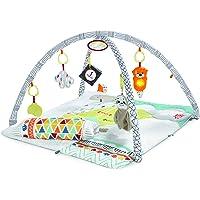 フィッシャープライス(fisher price) パーフェクトセンスデラックスジム【0カ月~】【知育玩具】【布おもちゃ…