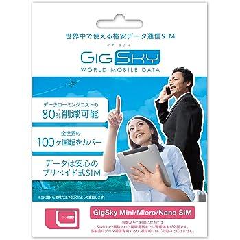 GigSky プリペイド式 4G LTE/3Gデータ通信用SIM GIGSKYH113