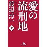 愛の流刑地〈上〉 (幻冬舎文庫)