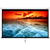 Projector Screen Manual Pull Down 100 inch 16:9 Projection Movies Screens HD Wrinkle-Free for Home Theater School Office Indo
