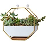 """VanEnjoy 7"""" White Ceramic Wall Planters Vase and Copper,Drainage Hole with Bamboo Tray - Succulent Pot Air Plants Mini Cactus"""