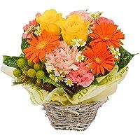 花由 バラと季節の花 おまかせ生花アレンジメント Sサイズ おまかせ 2-3日後お届け