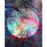 5D Diamond Painting by Number Kit, Bright Moon Full Drill Embroidery Cross Stitch Picture Supplies Arts Craft Wall Sticker De