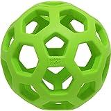 JW Pet Company 犬用おもちゃ ホーリーローラーボール ライトグリーン ミニ