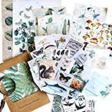 Stosts Vintage DIY Decorative Stickers Set, Retro Natural Collection Series-Plant Floral Butterfly Bird Animal Mushroom, Anti