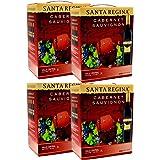 サンタレジーナ カベルネソービニオン赤3L 4本 チリ産ワイン