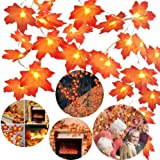 Twinkle Star Thanksgiving Decoration Fall Lights, 20 LED 11 FT Maple Leaves String Lights Battery Operated, Decor for Indoor,
