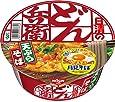 [訳あり(賞味期限2020年10月6日)] 日清食品 どん兵衛 天ぷらそば [東] 100g×12個