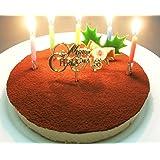 誕生日ケーキ 糖質75%カット 低糖質 生チョコレア チーズケーキ 5号(ローソク・誕生日プレート・柊ピック・カード付…