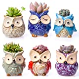 """Claywa Ceramic Owl Succulent Pots Cute Animal Plant Planters 2.75"""" to 3.35"""" with Drainage Pack of 6"""
