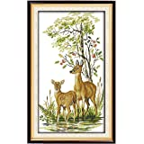Full Range of Embroidery Starter Kits Cross Stitch Kits Beginners for DIY Embroidery with 40 Pattern Designs - Deer Family
