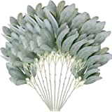 """Faux Lambs Ear Stems [Pack of 12, 14"""" Length] Fake Lambs Ear Greenery to Create Flower Arrangements for Weddings, Parties, Wr"""