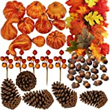 Winlyn 75 Pcs Artificial Autumn Gourds, Mini Pumpkins, Leaves, Acorns and Berries Fall Decorating Kit Thanksgiving Halloween