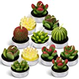 LA BELLEFÉE Cactus Candles Tealight Smokeless Handmade Cute Mini Plants Gift Set Plant 12