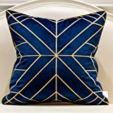 Avigers 20 x 20 Inches Navy Blue Gold Striped Cushion Cases Luxury European Throw Pillow Covers Decorative Pillows for Couch