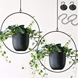 Abetree 2 Pcs Hanging Planters for Indoor and Outdoor Plants with Hooks Metal Modern Wall and Ceiling Planter Minimalist Flow