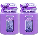 Decorlife 2-Pack Scented Candle, 22 oz Each Large Candle Jar, Nature Soy Wax Two Wicks with Over 100 Hrs Even Burn time, Cand
