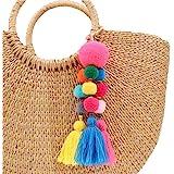 QTMY Colorful Pom Pom Tassel Long Bag Charm Pendant Keyring Keychain for Women Purse Handbag Decor