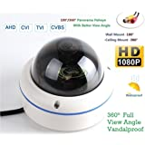 """180/360˚ Panorama View Angle 700TVL 1/3 1/3"""" Sony Super HAD II CCD Double Scan Indoor/Outdoor Dome Security Camera, Advanced"""