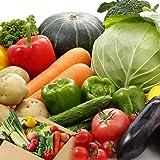 野菜詰め合わせ 市場直送おまかせ国産野菜セット 10~13品 浅込 国産