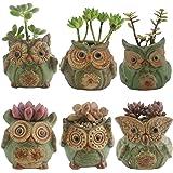 Ogrmar 6Pack Owl Plant Window Boxes Cute Owl Flower Pot/Modern Ceramic Succulent Planter Pots/Tiny Flower Plant Containers An