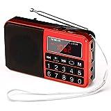 Gemean L-238SW ポータブル USB ラジオ 充電式 携帯 対応 ワイド FM AM (MW) 短波 by Gemean (バラ色)