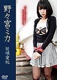 野々宮ミカ   従順愛玩 [DVD]