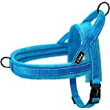 Didog Soft Flannel Padded Dog Vest Harness, Escape Proof/Quick Fit Reflective Dog Strap Harness,Easy for Training Walking,Blu