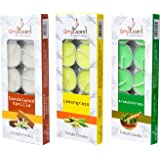 Ampliscent Tea Lights Candles Aromatherapy Candle Natural Soy Wax for Candle Holder and Gift Set (Lemongrass + Aromatherapy +