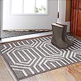 (80cm x 120cm ) - Indoor Doormat 80cm x 120cm , Absorbent Front Back Door Mat Floor Mats, Rubber Backing Non Slip Door Mats I