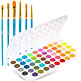 Fundamentals Watercolor Artist Set, Ohuhu 48-Color Watercolor Pan Set Vibrant Water-Color Cakes, with a Variety of 6 Paintbru