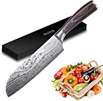 PAUDIN Chef Knife Sharp Kitchen Knife German Stainless Steel with Ergonomic Wood Handle