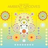 Collected Ambient Grooves