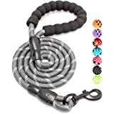 BAAPET 5 FT Strong Dog Leash with Comfortable Padded Handle and Highly Reflective Threads for Small Medium and Large Dogs (1/