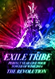 EXILE TRIBE PERFECT YEAR LIVE TOUR TOWER OF WISH 2014 ~THE R…