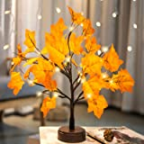 Pooqla Lighted Maple Tree Artificial Fall Tree Light 24 LED Maple Leaves Autumn Tree Light Tabletop Decor for Thanksgiving Ch